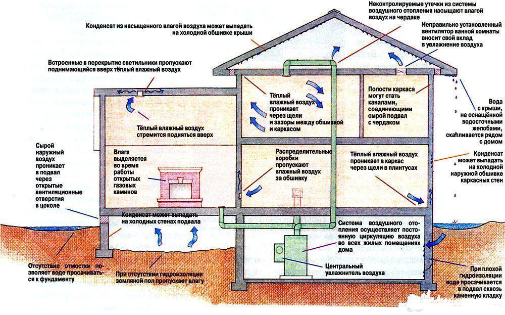 На схеме показаны возможные причины образования очагов повышенной влажности в жилом доме.