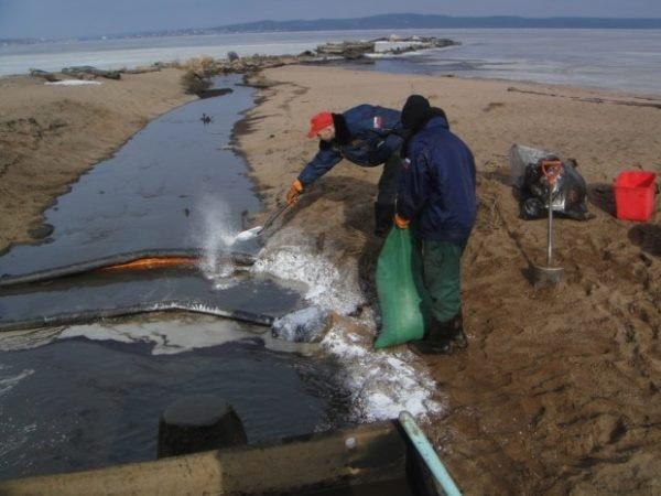Поборники экологии периодически проверяют стоки из ливневки.