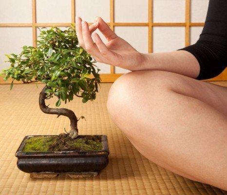 Прекрасное место для медитации