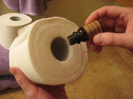 Если просто капнуть эфирное масло на втулку туалетной бумаги – эффект будет сходным