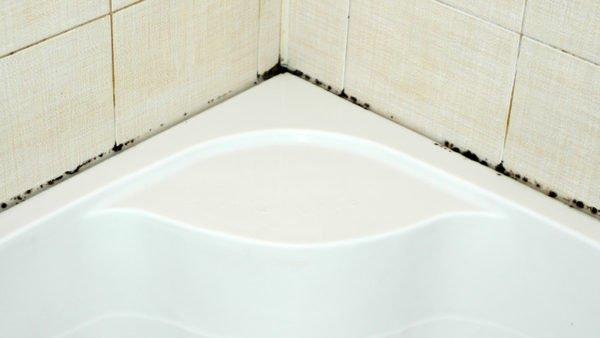 Фото небольших плесневых порослей на шве между ванной и стенкой