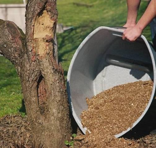 Содержимое резервуара торфяного туалета можно использовать в качестве удобрения