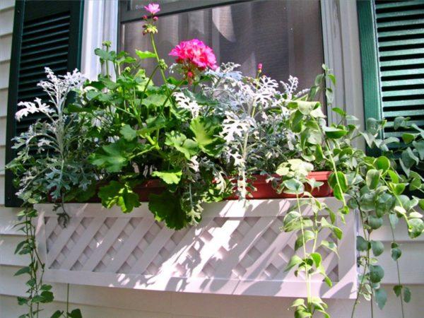 Как прикрепить ящики для цветов за окном