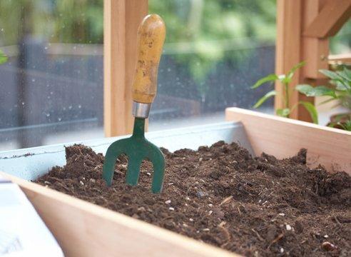 Из грунта удаляются все корни, после чего его можно собрать и сохранить до следующего года