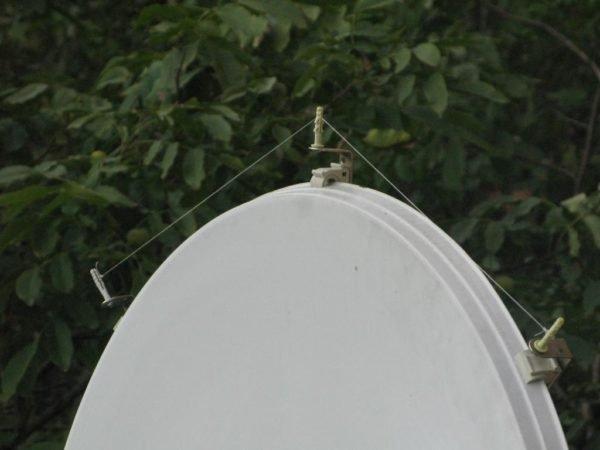Леска натягивается над всеми предметами, на которых сидят птицы