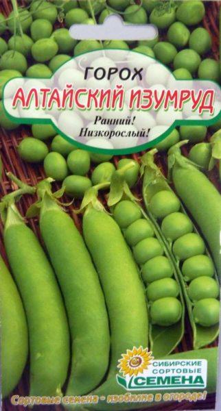 На фото- сорт Алтайский изумруд.