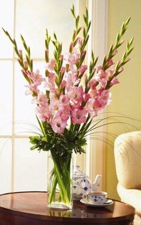 Не менее красивые, чем на фото, цветы вы сможете высадить самостоятельно