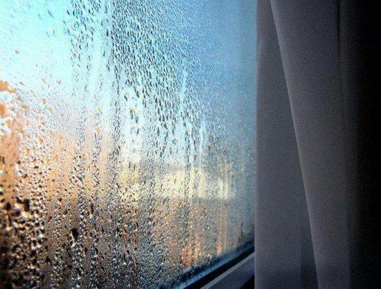 Повышенная влажность является основной причиной появления плесени