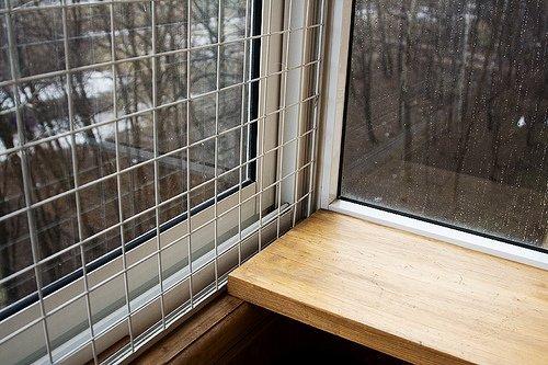Сетка антикошка на окна: металлические москитные конструкции.
