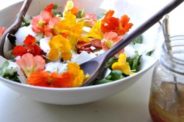 Вот такой цветастый салат из настурции, базилика и сыра