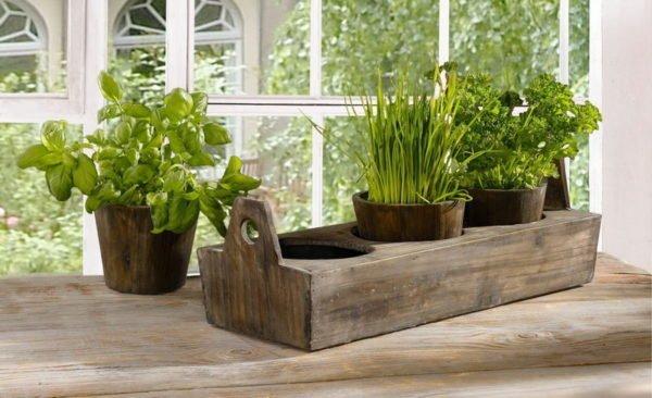 Выращивание своими руками овощей на балконной грядке – увлекательное и полезное занятие