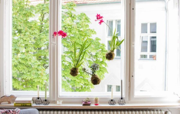 tsvety-na-okne-nad-oknom-i-vozle-okna-600x382 Декорирование окон – как украсить окно своими руками
