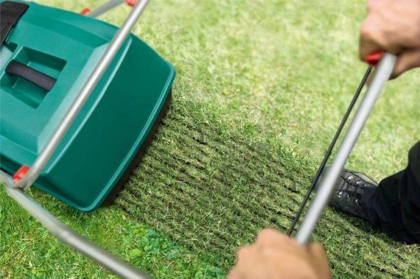 Аэратор позволит поддерживать газоны ухоженными без особой потери времени и сил