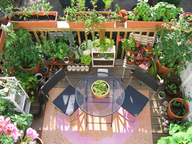Фото мини-садика на балконе
