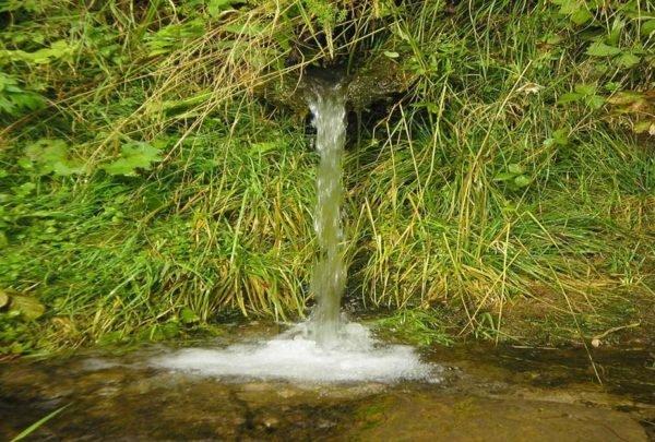 Грунтовые воды могут выходить на поверхность в виде родников