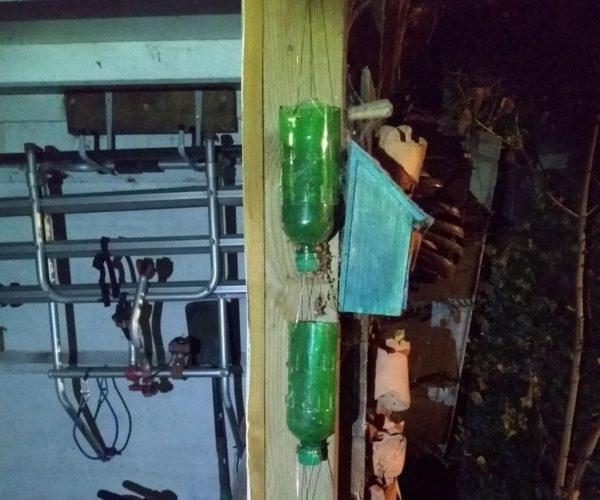 Из старых пластиковых бутылок можно сделать отличный подвесной сад