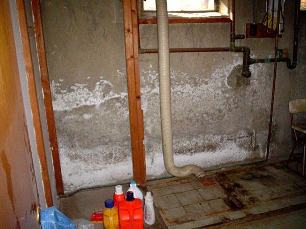 Из-за воздействия влаги в мокрых помещениях приходится часто делать ремонты.