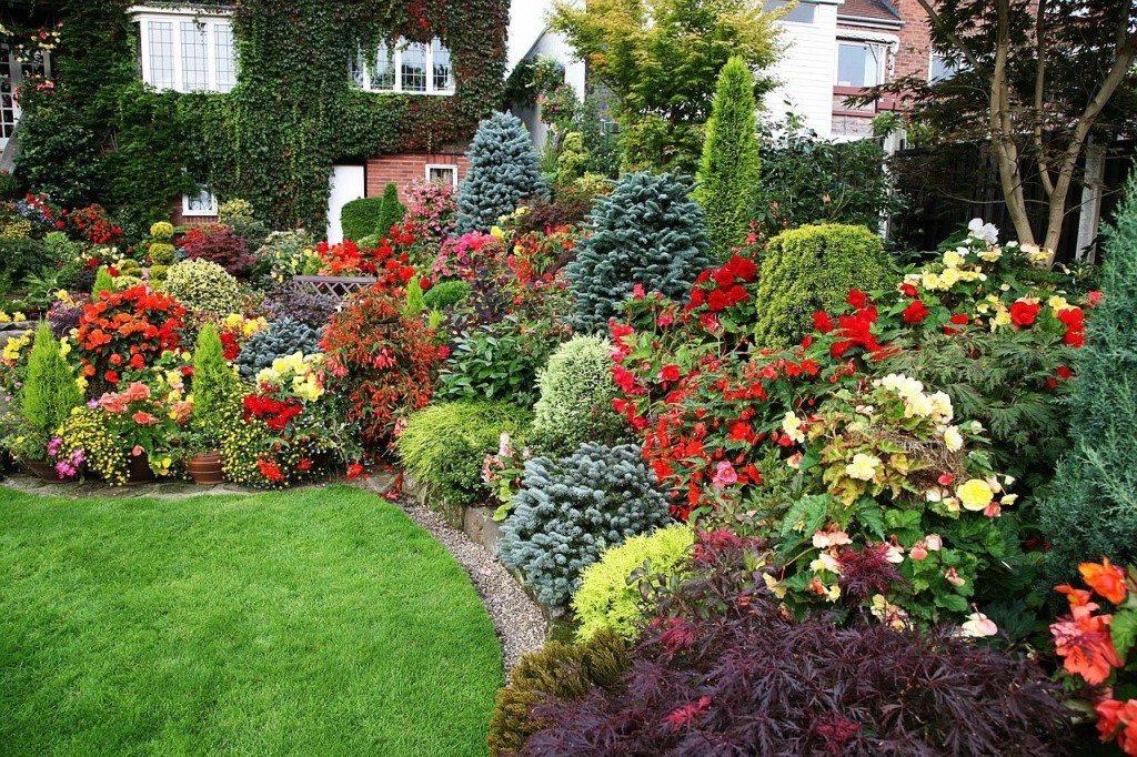 Клумбы придадут яркость и аромат вашему саду