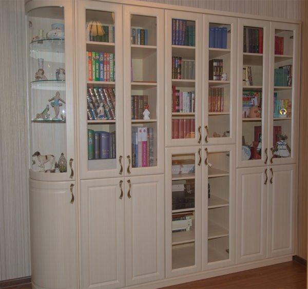 Книжные шкафы со стеклянными дверцами различаются многими параметрами