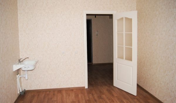 Кухонная и входная (на заднем фоне) двери.