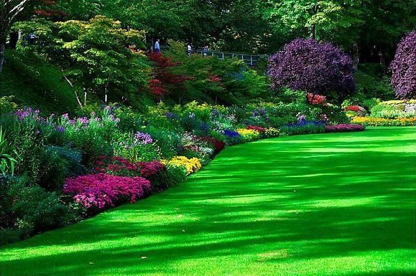 Многоуровневые клумбы – гармоничный декор для любого садового участка