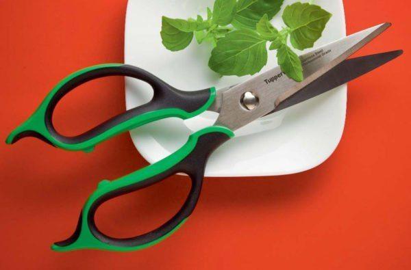 Ножницы — незаменимый инструмент для каждой кухни.