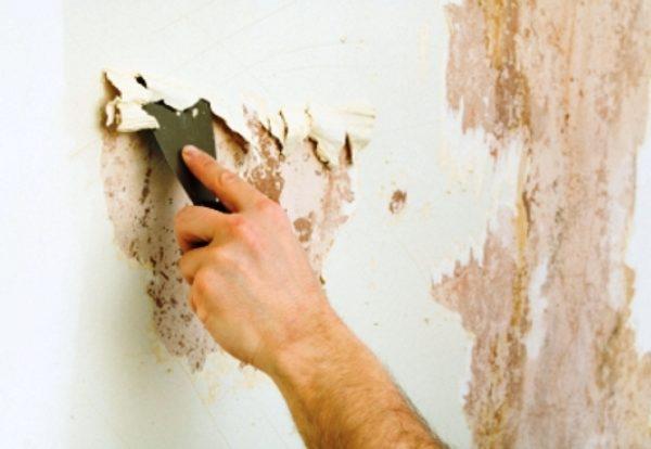 Сначала со стен убирается старая краска.