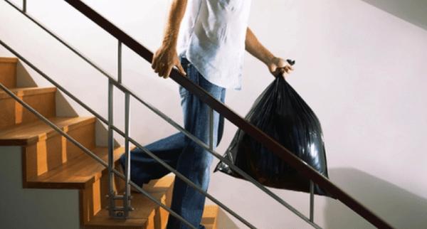 Своевременная уборка и вынос мусора уберегут от мелких паразитов
