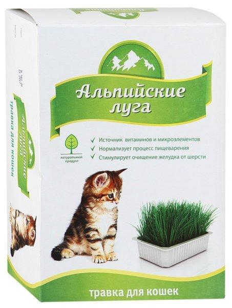 Упаковка семян для высадки