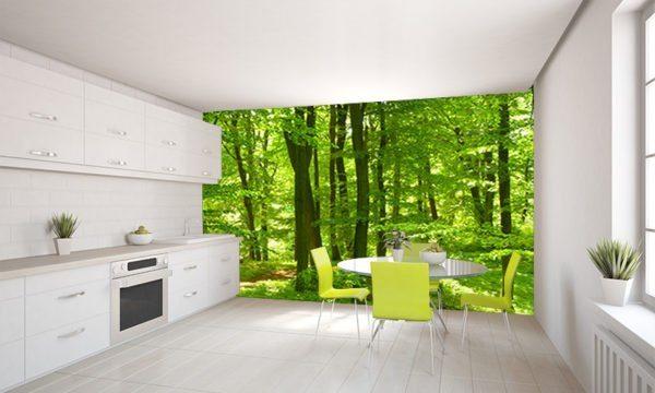 Живая природа считается беспроигрышным вариантом при обустройстве любого помещения.